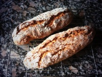 biscotti loaves